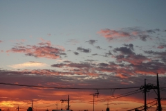 20210923_015-blog
